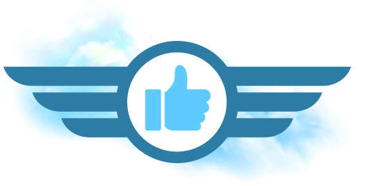 Airplane wings with a Facebook like due to a positive Delta customer experience